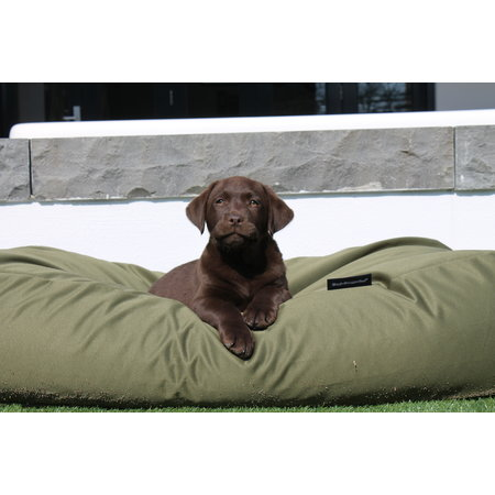 Dog's Companion® Housse supplémentaire Vert Olive (coating)