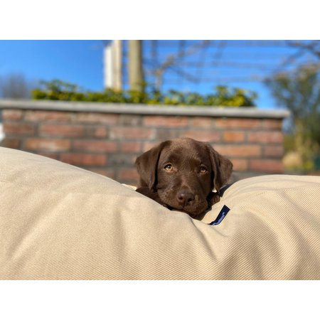Dog's Companion® Lit pour chien Beige Large