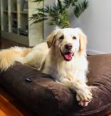 Dog's Companion® Coussin pour chien Chocolat (corduroy) Medium