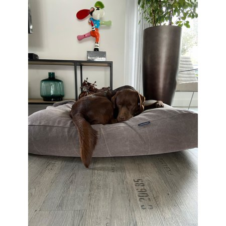Dog's Companion® Lit pour chien Stone washed brown