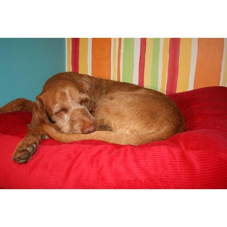 Dog's Companion® Lit pour chien Rouge (corduroy)