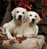 Dog's Companion® Lit pour chien Country Field Medium