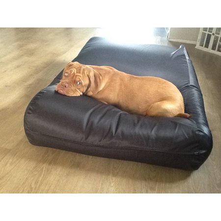 Dog's Companion® Lit pour chien Noir (coating) Large