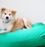 Dog's Companion® Lit pour chien vert printemps (coating) Large