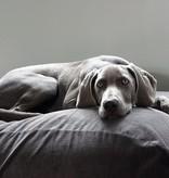 Dog's Companion® Lit pour chien Gris souris (corduroy) Small