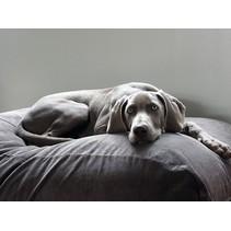 Lit pour chien Gris souris (corduroy) Large