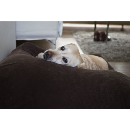 Dog's Companion® Coussin pour grand chien Chocolat (corduroy) Superlarge