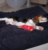 Dog's Companion® Coussin pour chien Black Smoke (corduroy) Small