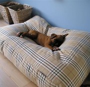 Dog's Companion Lit pour chien Country Field