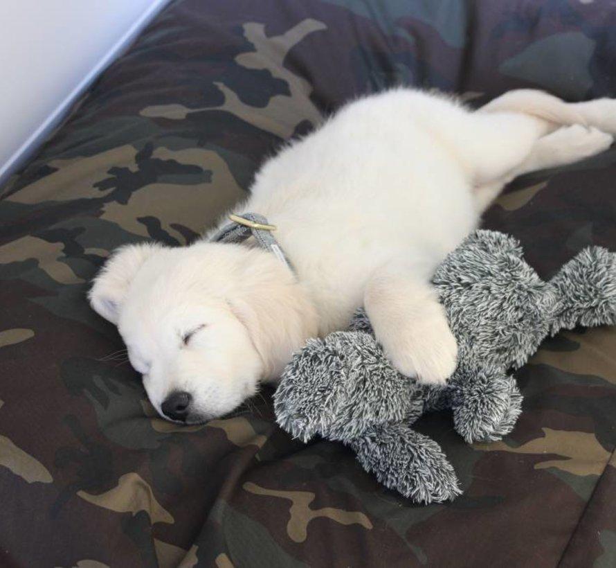 Dog bed Army Superlarge