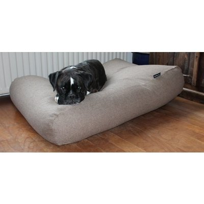 Outlet dog beds