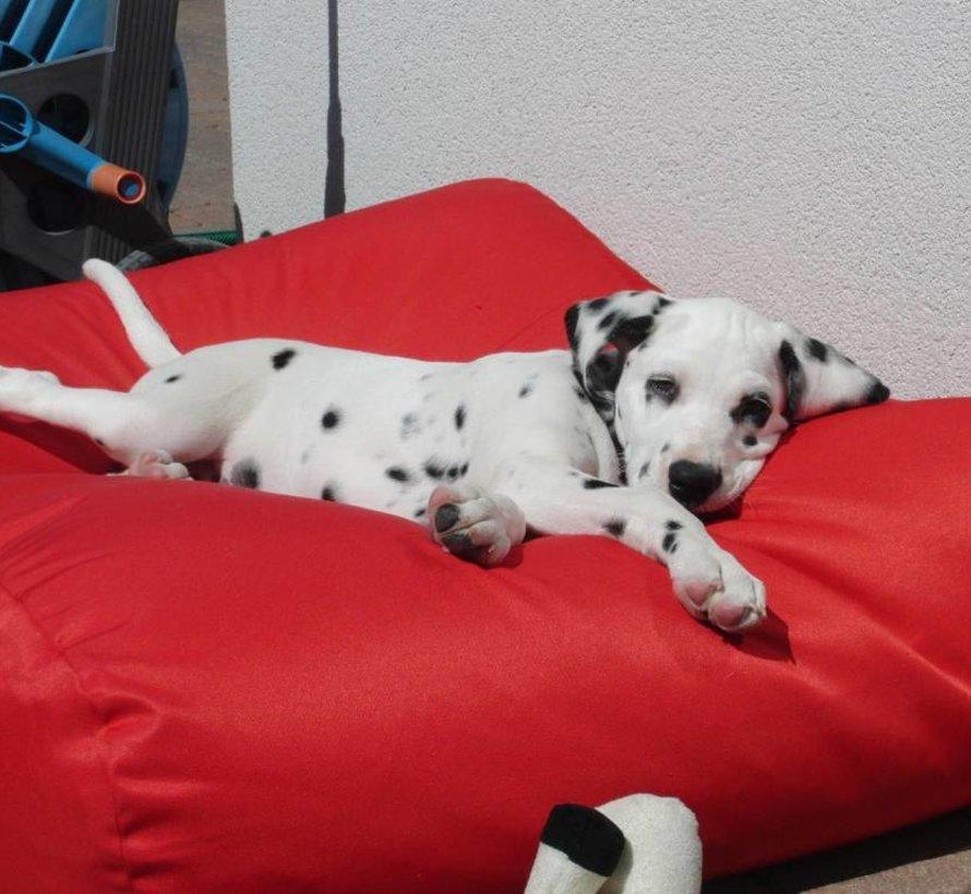 Dog bed red (coating) large