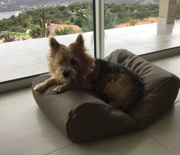 Dog's Companion Dog bed taupe leather look Extra Small