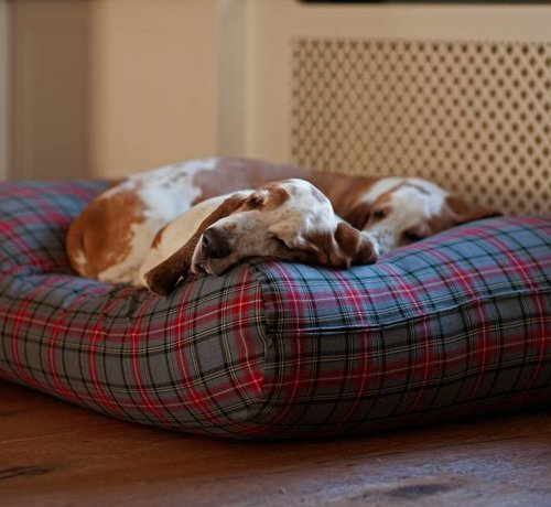 Dog's Companion Hundebett Scottish Grau Medium