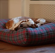 Dog's Companion Hundebett Scottish Grau Superlarge