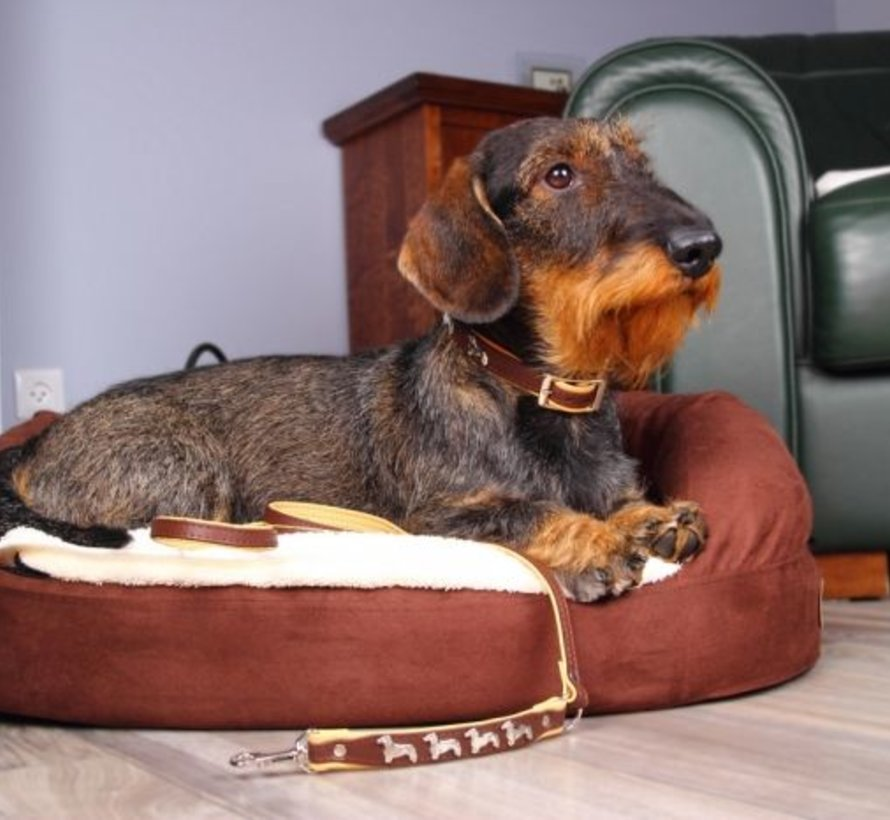 Hundeleine Leder (Dachshund)