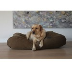 Brown dog beds