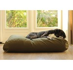 Green dog beds