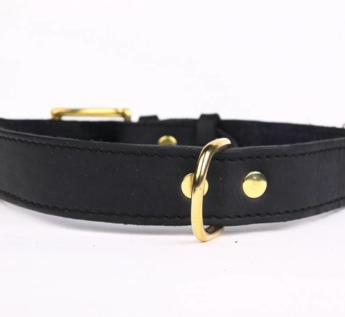 Adjustable leather collar exclusive gold