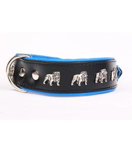 Leather dog collar English bulldog