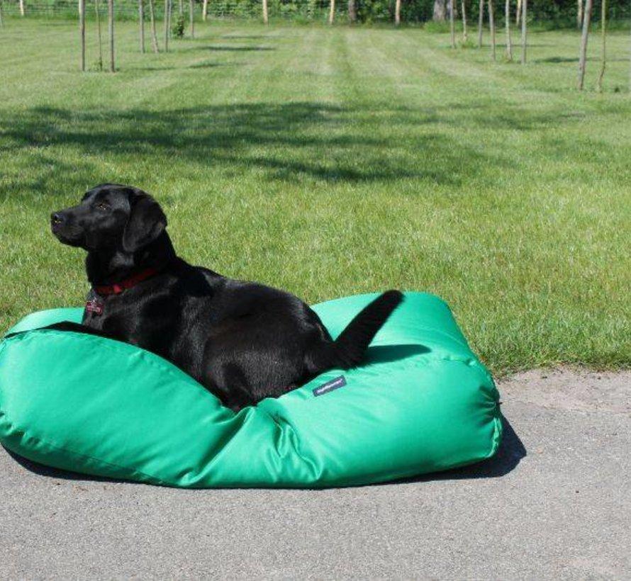 Lit pour chien vert printemps (coating)