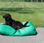 Dog's Companion Hondenbed lentegroen vuilafstotende coating Superlarge