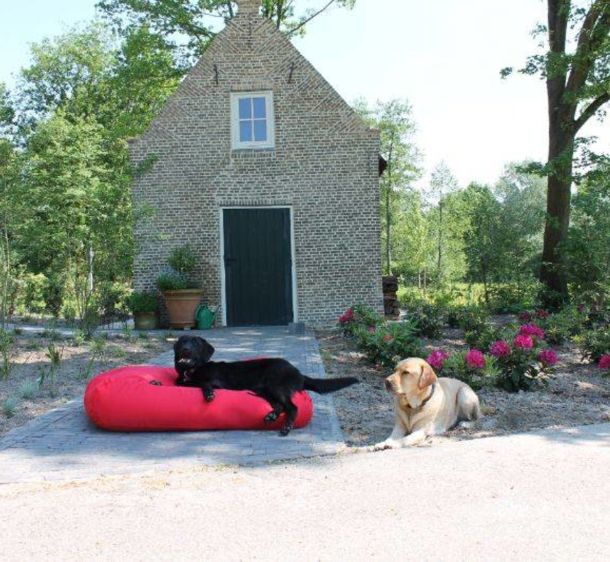 Lit pour chien rouge (coating) Extra Small