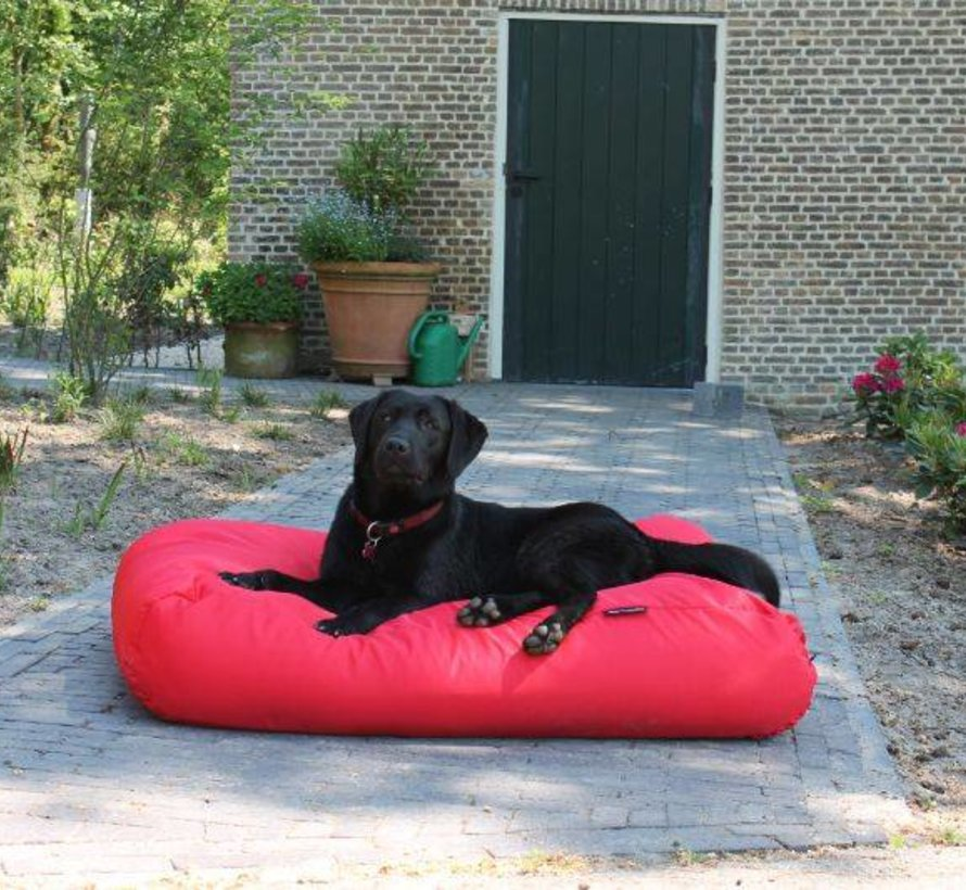 Dog bed red (coating) small