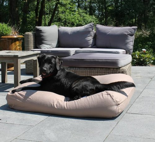 Dog's Companion Dog bed walnut upholstery Extra Small