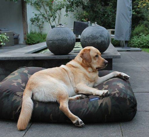 Dog's Companion Hundebett Army Extra Small