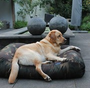 Dog's Companion Lit pour chien Army Large