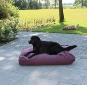 Dog's Companion Dog bed Cassis (upholstery) Small