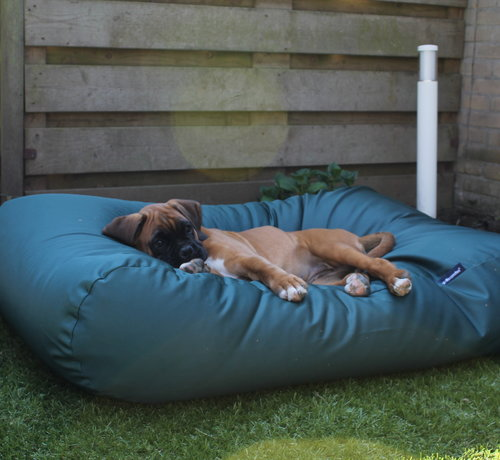 Dog's Companion Hondenbed Groen vuilafstotende coating Medium