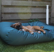 Dog's Companion Hondenbed Groen vuilafstotende coating Large