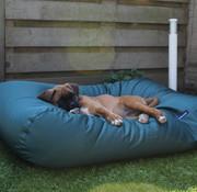 Dog's Companion Lit pour chien Vert (coating)  Superlarge