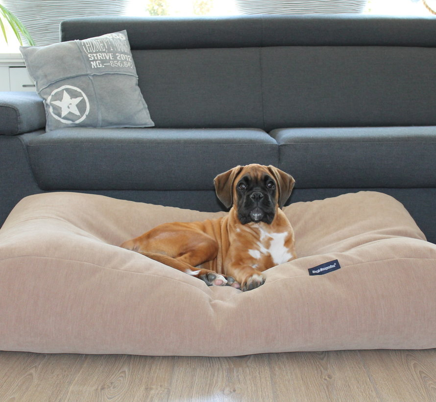 Lit pour chien Caramel (chenille velours) Extra Small