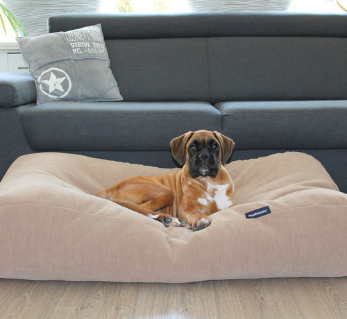 Dog's Companion Dog bed Caramel (chenille velours) Small