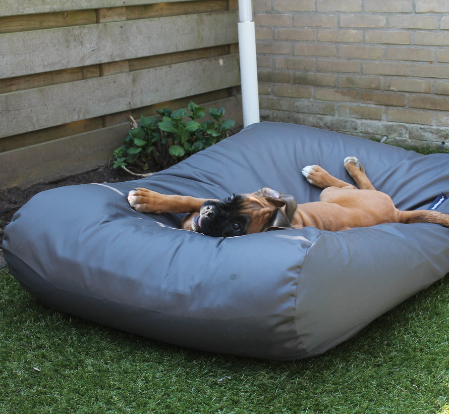 Dog bed Charcoal (coating) Medium