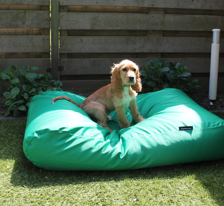 Dog bed spring green (coating) Medium