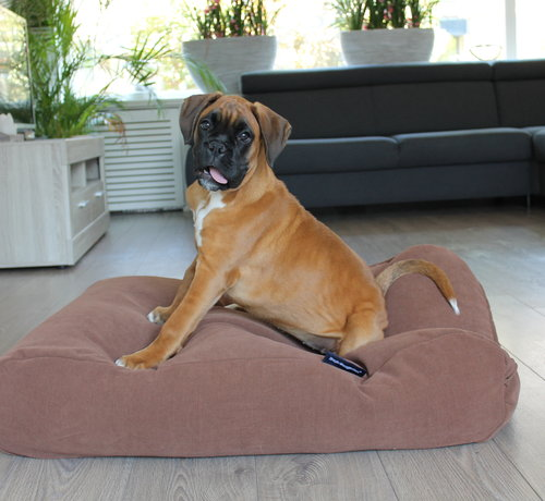 Dog's Companion Lit pour chien Moka (chenille velours) Small