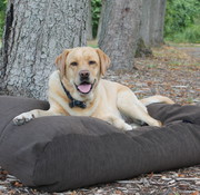 Dog's Companion Dog bed Espresso (Corduroy)