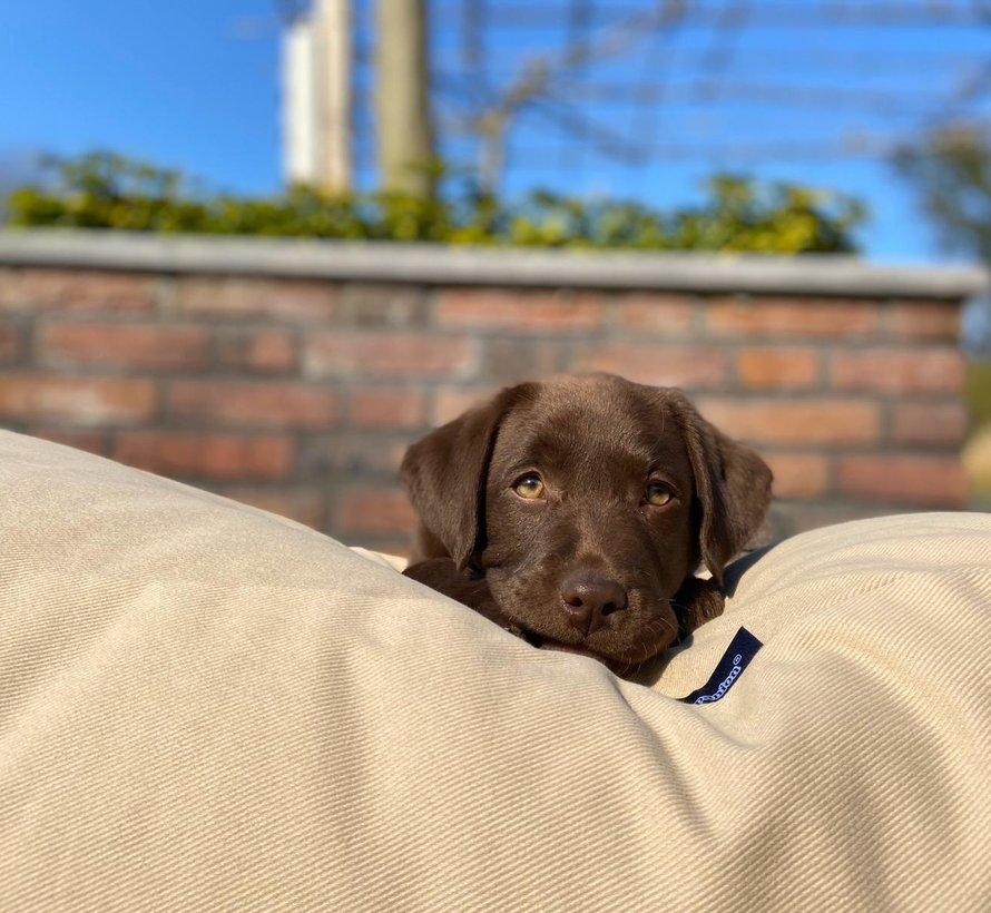 Hundebett Beige Small