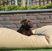 Dog's Companion Hondenbed Sahara Small