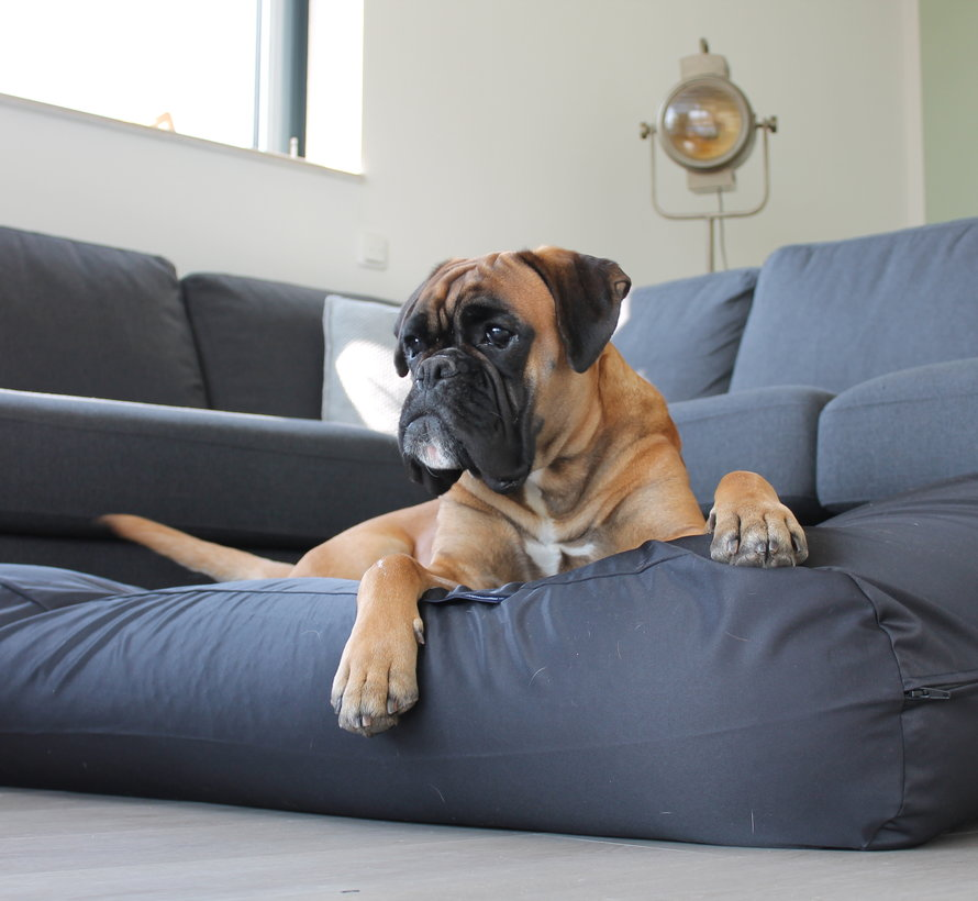 Dog bed Black (coating) Small