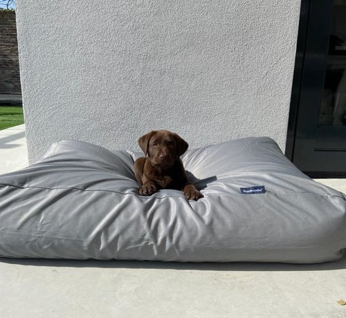 Dog's Companion Hundebett Hellgrau (beschichtet) Large