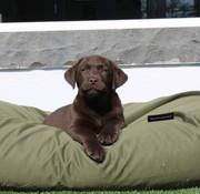 Dog's Companion Hundebett Olivgrün (beschichtet) Small