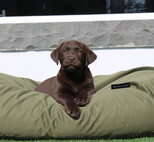 Dog's Companion Dog bed Olive green (coating) Large