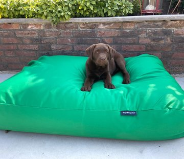 Dog's Companion Dog bed spring green (coating)