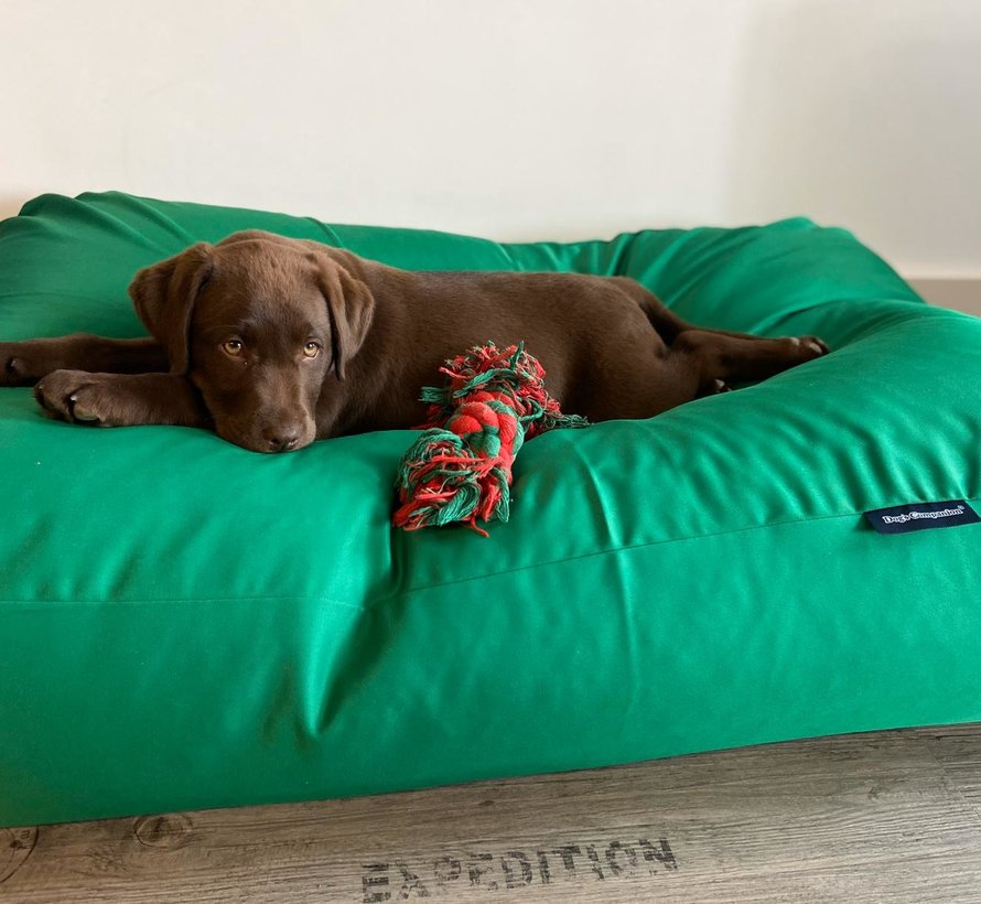 Dog bed spring green (coating)