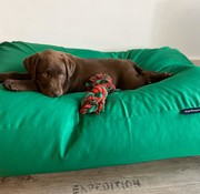 Dog's Companion Dog bed spring green (coating) Extra Small